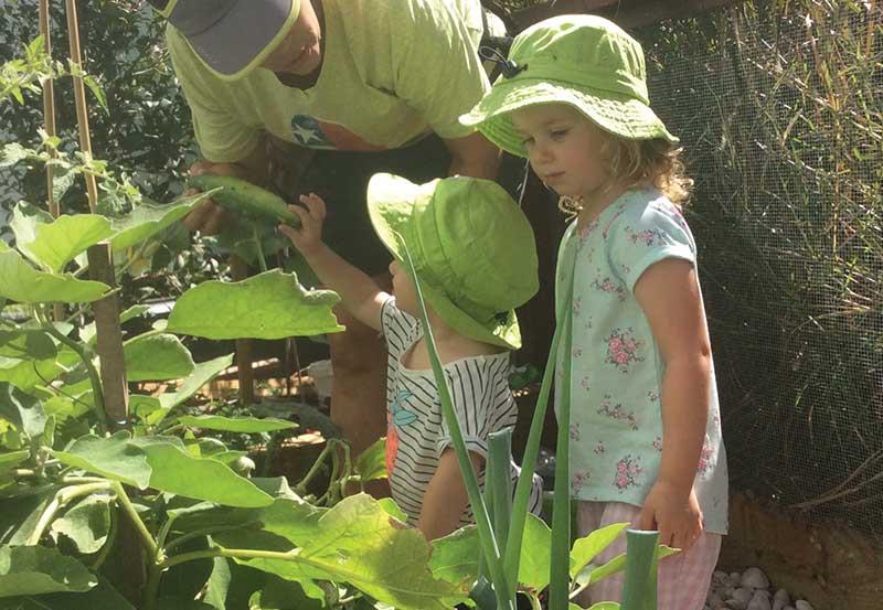 Children In Vegetable Field